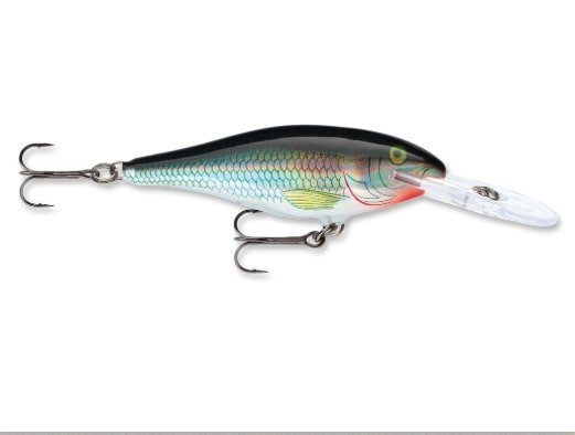 Rapala Shad Rap for Rainy River Walleye